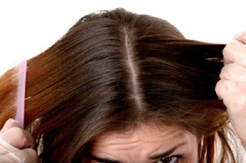Du kan bl.a. bruge æblecidereddike i din skønhedsrutine, når det kommer til dit hår!