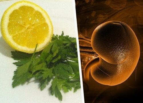 Persille og citron: den perfekte detox til nyrerne