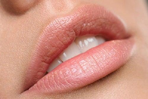 Citron kan gøre dig smukkere ved at eksfoliere dine læber