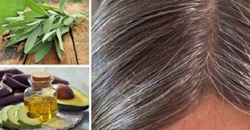 Årsager og naturlægemidler til gråt hår
