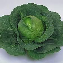 Kål er sundt for dine nyrer. Den er en af de grøntsager nyrer elsker.