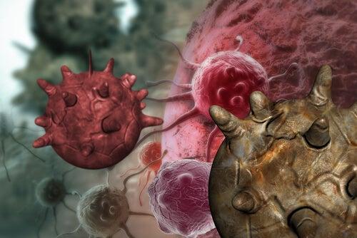Kræftceller
