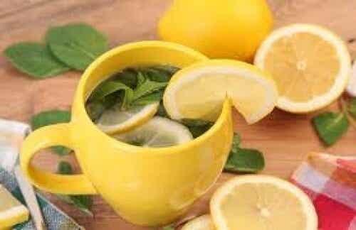 Te der kan reducere mavefedt