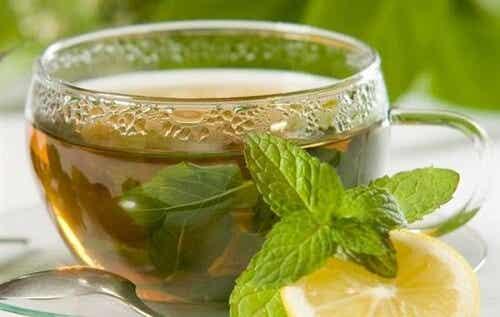 Te og infusioner - en essentiel guide