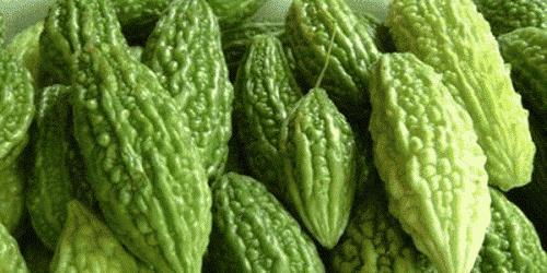 Forskning viser at bitter agurk kan helbrede kræft og diabetes