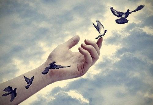 Arm og lidt fugle