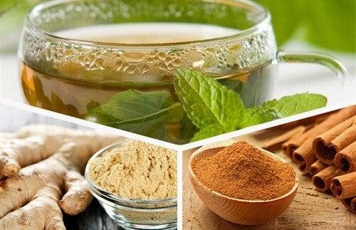 Forny din krop hver dag med grøn te, ingefær og kanel