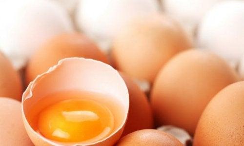 Hvad er mest gavnligt: Æggehvider eller æggeblommer?