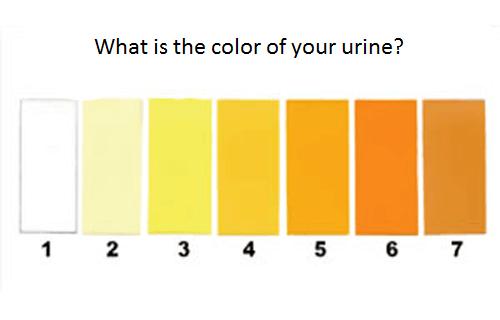 urin farve grøn