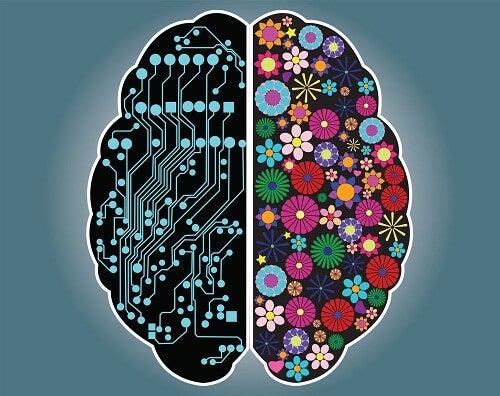 Er du rationel eller intuitiv? Find ud af det her!