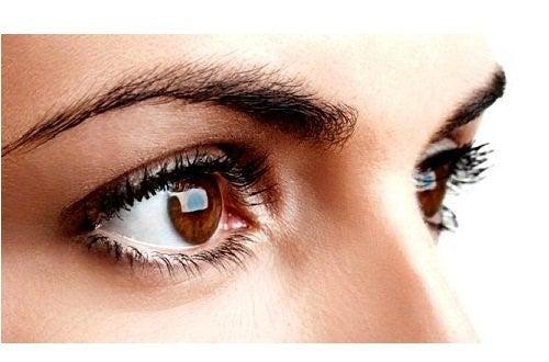 Øjenbryn og vipper