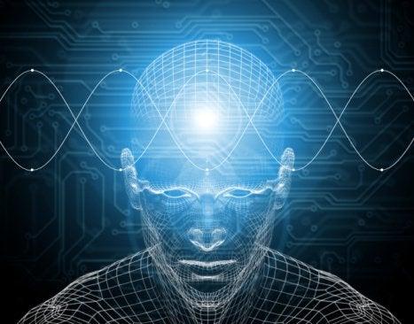 Dele af hjernen færdigudvikles først når du er 36