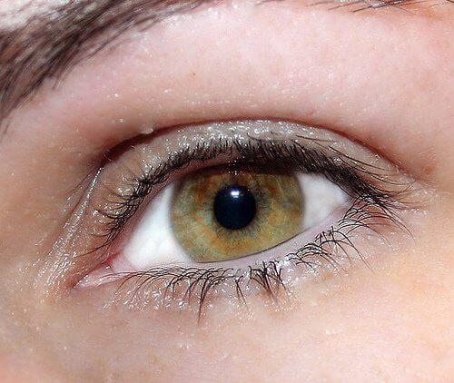 Irriterede øjne kan forårsages af forskellige ting.