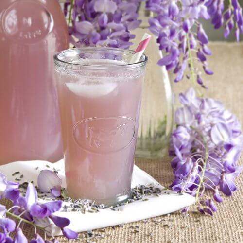 Lavendel er en god blomst at bruge i sine medicinske infusioner