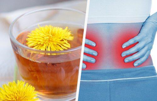 5 enkle måder at afgifte dine nyrer