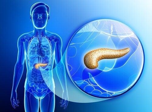 symptomer på problemer med bugspytkirtlen