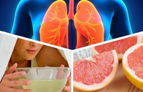 Sådan afgifter du dine lunger gennem din kost