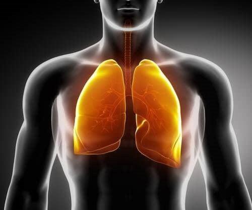3 tetyper til at styrke dine lunger