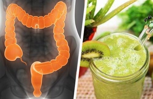 Groen smoothie til din tyktarm