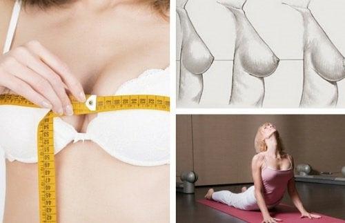 Større bryster naturligt