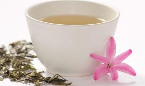 Hvid te indeholder gode flavonoider mod angst