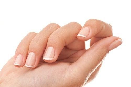 Paene fingernegle