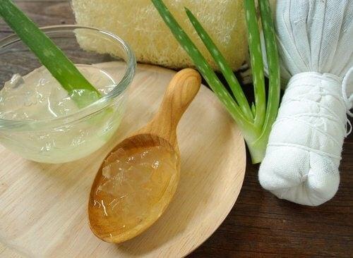 Aloe vera - naturlig fodcreme
