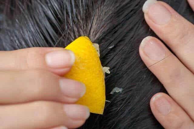 Brug citronsaft mod hårtab