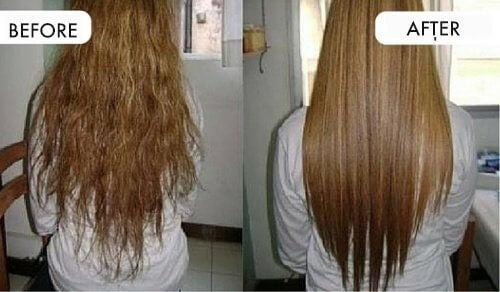 kokosolja i håret resultat