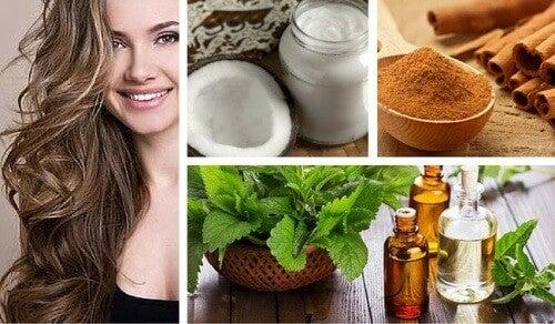 Kokos, mint og kanel til at stimulere hårvækst