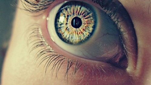 7 mærkelige kendsgerninger om dine pupiller