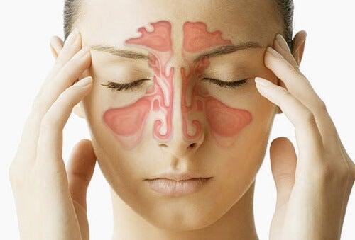 stoppet næse uden snot