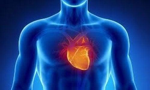 hjerte5