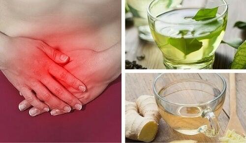 De 8 bedste typer te mod luft i maven