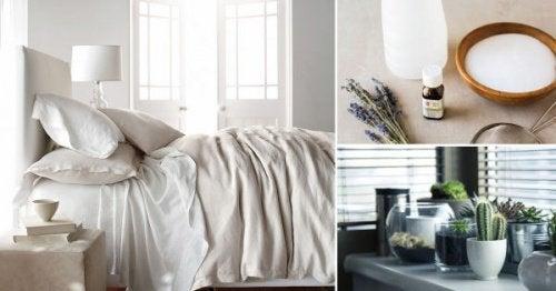 8 metoder til at desinficere dit værelse naturligt