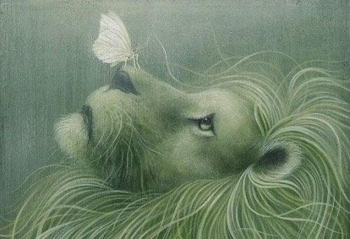 Loeve med sommerfugl paa naesen