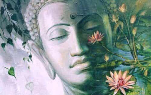 4 buddhistiske læresætninger om kærlighed