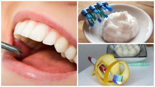 bagepulver til tænder