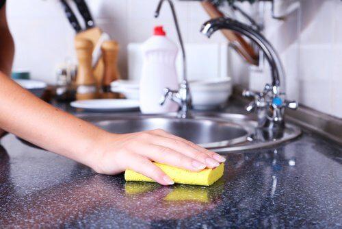 De skjulte farer i køkkensvampe