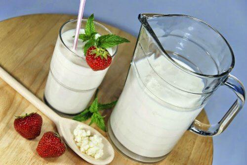 Lær om de 15 sundeste probiotika og præbiotika