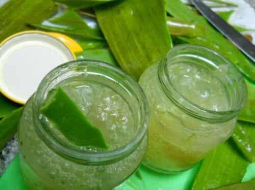 Sådan laver man hjemmelavet aloe vera gelé