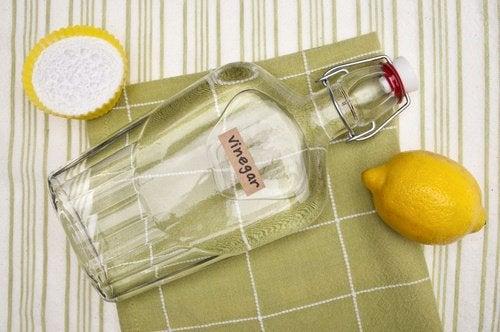 2-citron-og-eddike