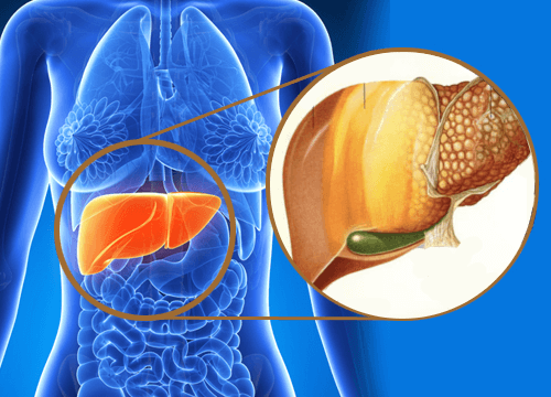 9 advarselstegn på, at giftstoffer hober sig op i din lever