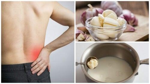 Idiotsikker opskrift: Hvidløgsmælk til at berolige iskias
