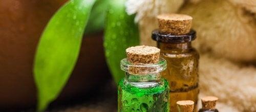 Tea-tree olie: Den fantastiske olie med utallige fordele