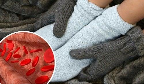 Beskyt dit blodomløb og bekæmp betændelse