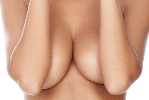 bryster2