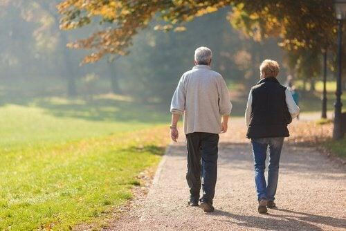 To aeldre der gaar en tur