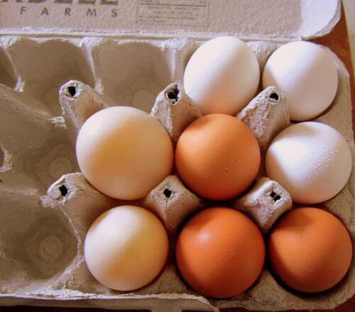 Hvordan kan jeg genbruge æggebakker?