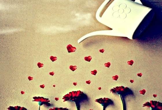 hjerte-blomster